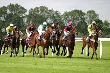 horse-racinga